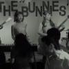 THE BUNNIES『Darkness』